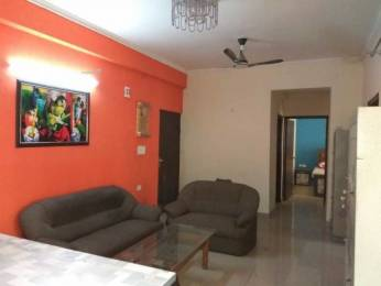 1147 sqft, 2 bhk Apartment in JM Orchid Sector 76, Noida at Rs. 15500