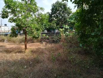 12411 sqft, Plot in Builder Annancheriparambu Palakkad Ponnani Road, Palakkad at Rs. 57.0000 Lacs