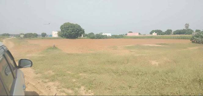 5445 sqft, Plot in Builder Farmhouse for sale Badsa, Jhajjar at Rs. 1.3310 Cr