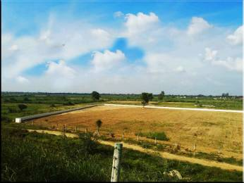 9000 sqft, Plot in Builder Project Near Jewar Airport At Yamuna Expressway, Greater Noida at Rs. 1.0000 Cr