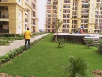 1082 sqft, 2 bhk Apartment in Supertech CapeTown Sector 74, Noida at Rs. 14000