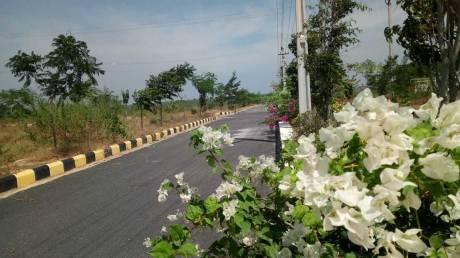 1503 sqft, Plot in Builder sark Green Leaf Thummaluru, Hyderabad at Rs. 13.3600 Lacs