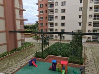 1480 sqft, 3 bhk Apartment in Brigade Wisteria At Meadows Kanakapura Road Beyond Nice Ring Road, Bangalore at Rs. 20000
