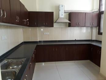 1000 sqft, 2 bhk Apartment in Builder Project Chitracoot, Jaipur at Rs. 18.5000 Lacs