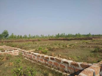 1200 sqft, Plot in Builder Project Sundarapada Jatani Road, Bhubaneswar at Rs. 12.0000 Lacs