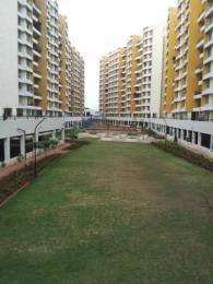 1050 sqft, 2 bhk Apartment in Builder Runwal Euphoria Kondhwa, Pune at Rs. 18000