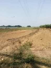 3200 sqft, Plot in Shine Valley Mohanlalganj, Lucknow at Rs. 17.6320 Lacs