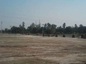 1000 sqft, Plot in Builder New side jhushi Shastri Bridge, Allahabad at Rs. 0.0100 Cr