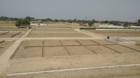 1000 sqft, Plot in Builder Project Muzaffarpur Mahua Road, Muzaffarpur at Rs. 6.0000 Lacs