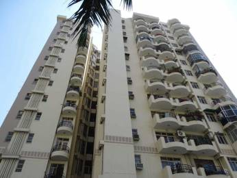 970 sqft, 2 bhk Apartment in Ansal Maple Heights Sector 43, Gurgaon at Rs. 88.0000 Lacs