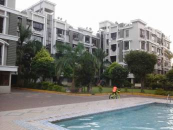 1550 sqft, 3 bhk Apartment in Builder Project New Alipore, Kolkata at Rs. 1.1500 Cr