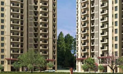 1000 sqft, 2 bhk Apartment in Emaar Emerald Estate Sector 65, Gurgaon at Rs. 90.0000 Lacs