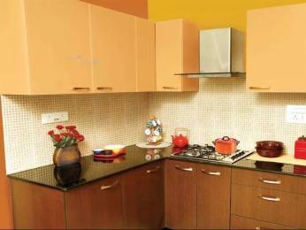 700 sqft, 1 bhk Apartment in Builder Kudale Patil Complex Sinhgad Road, Pune at Rs. 9000
