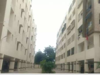 1600 sqft, 3 bhk Apartment in Siva Green Valley Apartment Gorantla, Guntur at Rs. 57.6000 Lacs