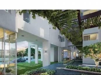 1287 sqft, 2 bhk Apartment in Godrej Air Sector 85, Gurgaon at Rs. 73.0000 Lacs