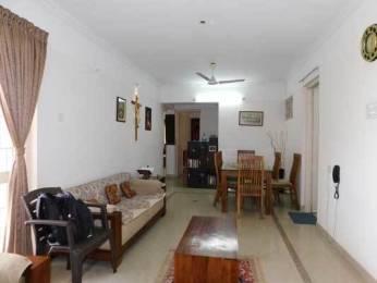 1600 sqft, 3 bhk Apartment in Builder Project Kuravankonam, Trivandrum at Rs. 12000