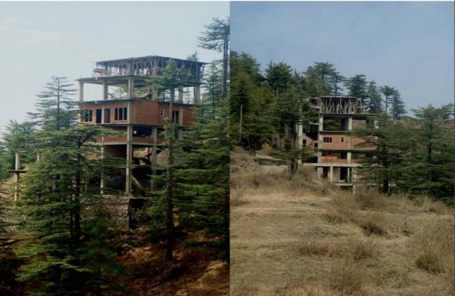 1100 sqft, 2 bhk Apartment in Builder Shimla Greens Bhont Bagora Road, Shimla at Rs. 46.2000 Lacs