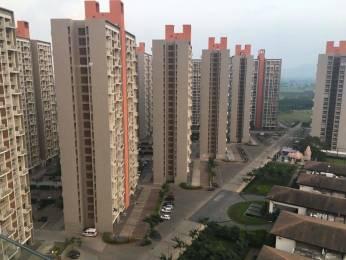 675 sqft, 1 bhk Apartment in Lodha Belmondo Gahunje, Pune at Rs. 50.0000 Lacs