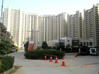 1960 sqft, 3 bhk Apartment in Mapsko Casa Bella Sector 82, Gurgaon at Rs. 98.0000 Lacs