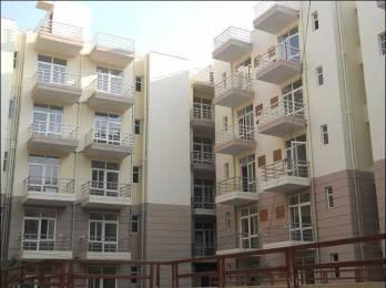 1120 sqft, 3 bhk Apartment in Genesis Gardenia Sector 16 Bhiwadi, Bhiwadi at Rs. 36.0000 Lacs
