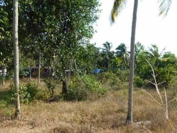 765 sqft, Plot in Builder Project Kazhakkoottam, Trivandrum at Rs. 6.5000 Lacs