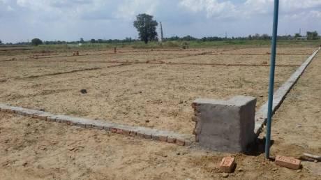 1000 sqft, Plot in Builder Tashi Naubatpur Bikram Road, Patna at Rs. 5.0000 Lacs