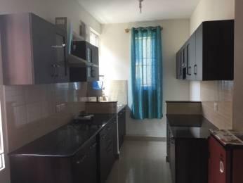 950 sqft, 2 bhk Apartment in Brigade Parklane at Brigade Meadows Kaggalipura, Bangalore at Rs. 13000