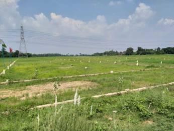 800 sqft, Plot in Builder Tashi sector 1 Naubatpur Bikram Road, Patna at Rs. 4.8000 Lacs