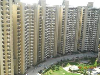 1430 sqft, 3 bhk Apartment in Mapsko Casa Bella Sector 82, Gurgaon at Rs. 69.0000 Lacs