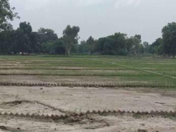 1000 sqft, Plot in Builder VAIDIK VIHAR raibareli road nigohan, Lucknow at Rs. 5.0100 Lacs