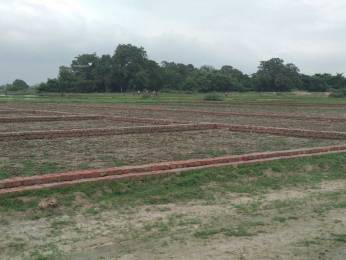 1000 sqft, Plot in Builder Mountain heaven Mirzapur, Mirzapur at Rs. 4.0100 Lacs