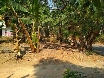 2565 sqft, Plot in Builder Project Karunagappally Kottarakkara Road, Kollam at Rs. 21.0000 Lacs