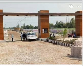 1000 sqft, Plot in Builder omna Naubatpur Bikram Road, Patna at Rs. 6.0100 Lacs
