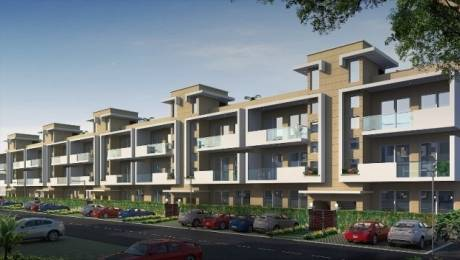 1093 sqft, 2 bhk BuilderFloor in Central Park Flamingo Floors Sector 33 Sohna, Gurgaon at Rs. 62.0000 Lacs
