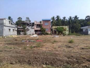 150 sqft, Plot in Builder Project Eluru Vari Street, Eluru at Rs. 16.8000 Lacs