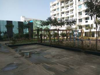 981 sqft, 2 bhk Apartment in Sun and Sun Inframetric Solus Heights Amlihdih, Raipur at Rs. 26.3900 Lacs