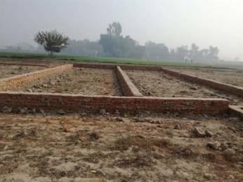 750 sqft, Plot in Builder Saraswati green city project Soraon Sikandra Road, Allahabad at Rs. 6.3750 Lacs