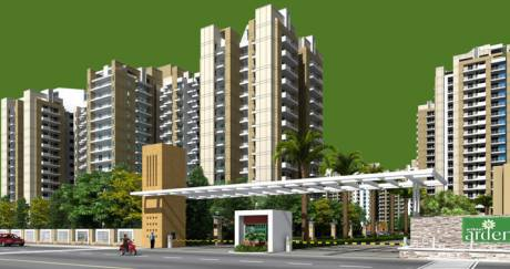 935 sqft, 2 bhk Apartment in Builder Project Noida Extn, Noida at Rs. 10000