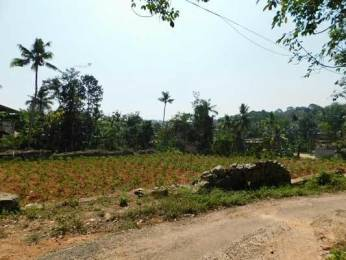 5220 sqft, Plot in Builder Project Pothencode, Trivandrum at Rs. 36.0000 Lacs