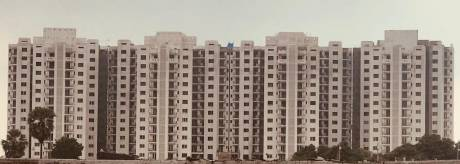 1150 sqft, 2 bhk Apartment in Shalimar Garden Bay Apartment Mubarakpur, Lucknow at Rs. 40.0000 Lacs
