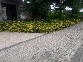 1205 sqft, Plot in Luxora The Willows Chandrakiran Nagar, Nagpur at Rs. 17.0000 Lacs