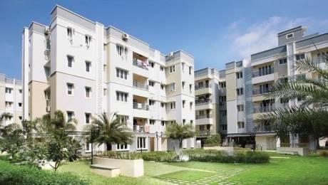 1579 sqft, 3 bhk Apartment in Navin Springfield Medavakkam, Chennai at Rs. 88.0000 Lacs