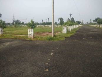 1485 sqft, Plot in Builder Project Kakinada Road, Kakinada at Rs. 12.5000 Lacs