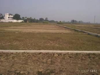 1000 sqft, Plot in Builder Kashiyana banarsh Raja Talab, Varanasi at Rs. 10.0000 Lacs
