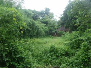 4356 sqft, Plot in Chathamkulam Sadgamaya Kuzhalmannam East, Palakkad at Rs. 7.5000 Lacs