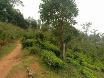 10900 sqft, Plot in Builder low budget props Kathadimattam, Ooty at Rs. 11.0000 Lacs