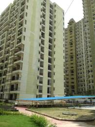 729 sqft, 2 bhk Apartment in Devika Gold Homz Sector 1 Noida Extension, Greater Noida at Rs. 23.3280 Lacs