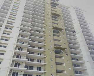 1309 sqft, 3 bhk Apartment in Trident Embassy Sector 1 Noida Extension, Greater Noida at Rs. 45.1605 Lacs