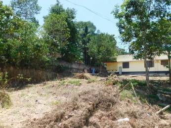 2178 sqft, Plot in Builder Project Pallippuram, Trivandrum at Rs. 25.0000 Lacs