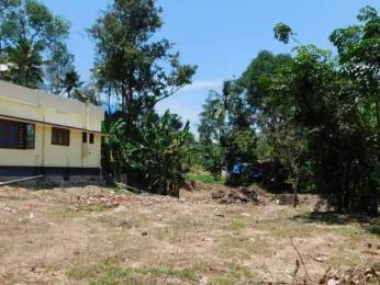 3483 sqft, Plot in Builder Project Pallippuram, Trivandrum at Rs. 40.0000 Lacs